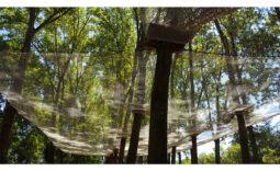 Kletternetze für Abenteuerparks, Baumklettern, Freizeitparks